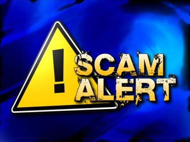 mlm scams